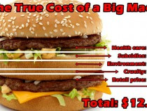 the-true-cost-of-a-big-mac-