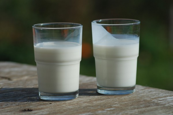 glasses of milk