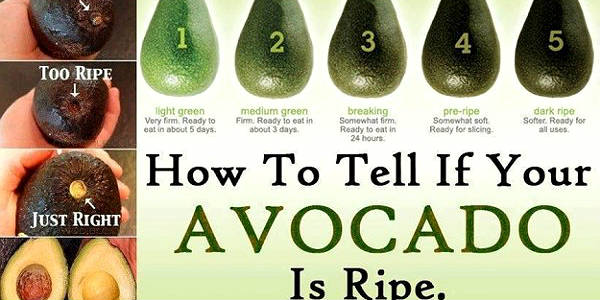 how-to-tell-if-your-avocado-is-ripe